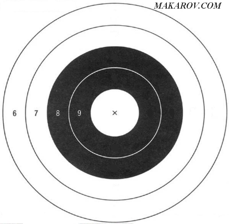This is a picture of Sassy Printable Nra Targets